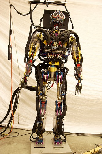 robots.txt :: friend or foe. Use this tool with care. It can go wrong.